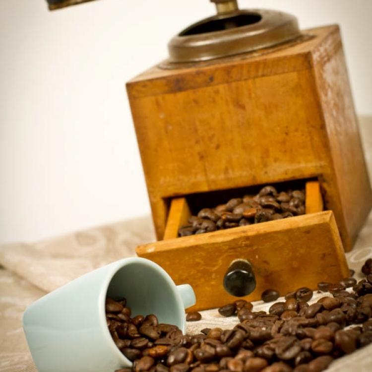 Il caffè :: Le materie prime :: Panificio Fantuzzi