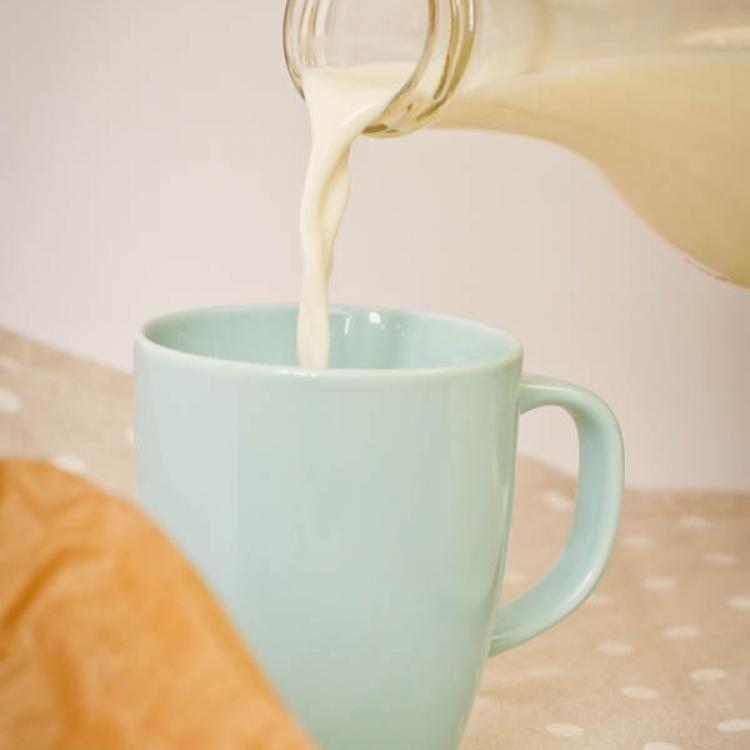 Il latte :: Le materie prime :: Panificio Fantuzzi