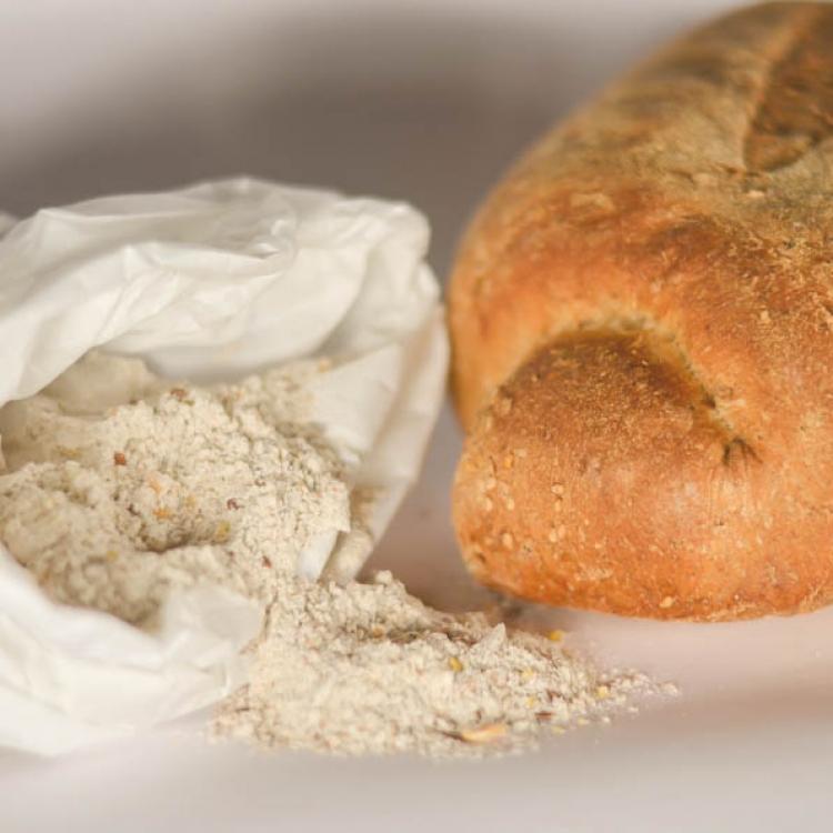 Pane ai cereali :: Il pane :: Panificio Fantuzzi